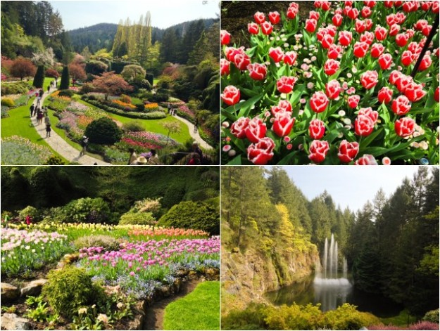 Thebutchartgardens